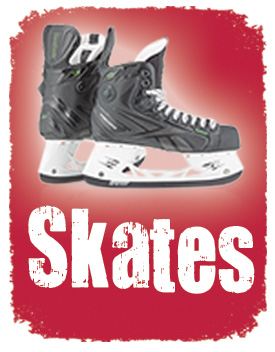 skates-panel